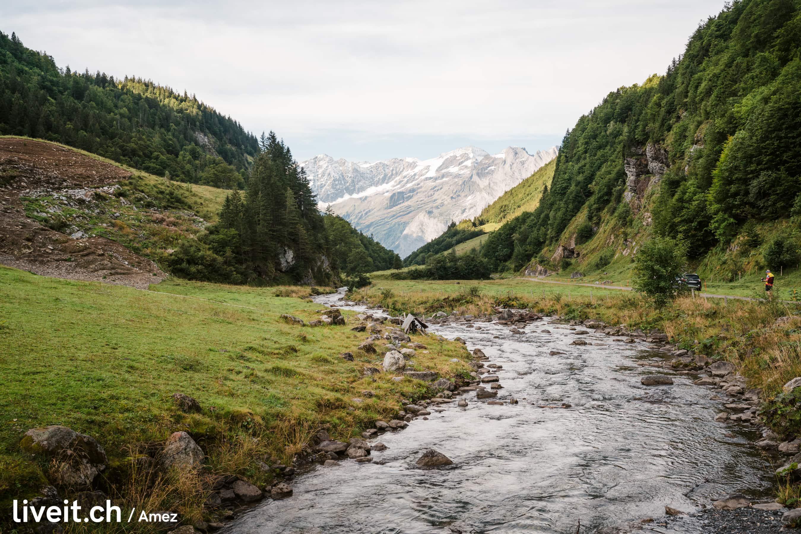 Alpabzug2019